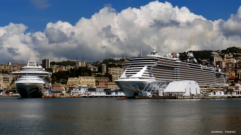 CROWN PRINCESS  e  MSC SEAVIEW